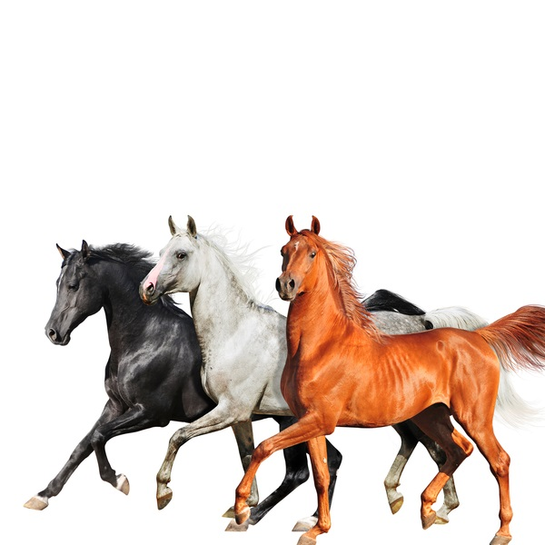 Lil Nas X, Billy Ray Cyrus, Diplo Old Town Road (Diplo Remix) MusikaCloud