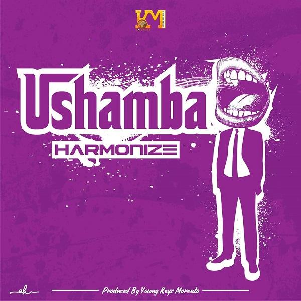 Harmonize Ushamba mp3 image