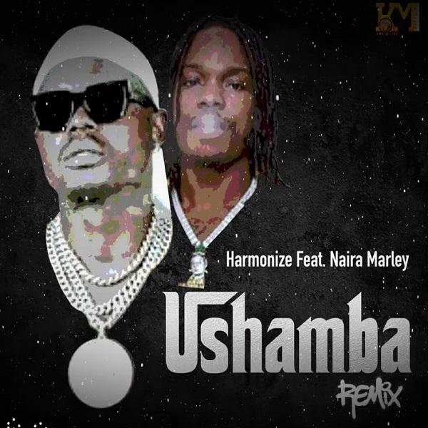Harmonize Ushamba Remix