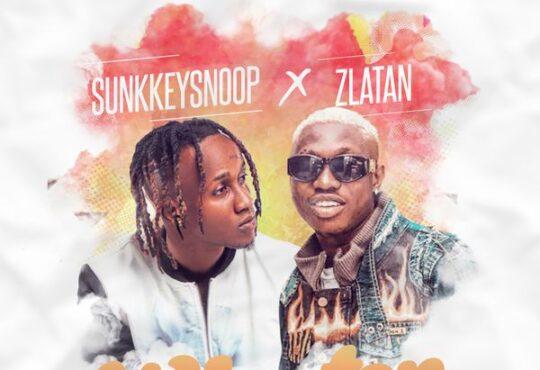 SunkkeySnoop Why Ton Frown Remix