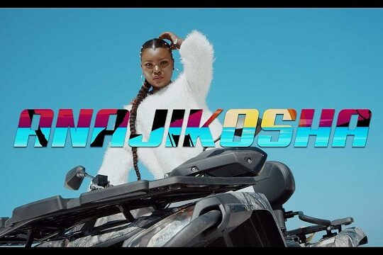 Harmonize Anajikosha Video
