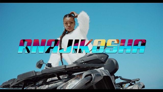 Harmonize Anajikosha Video