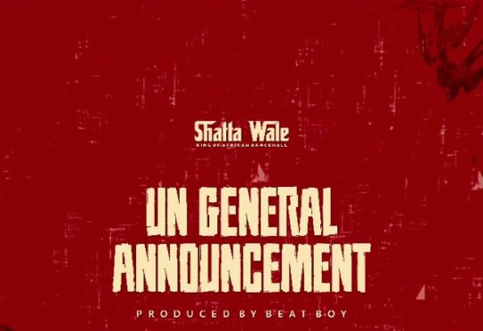 Shatta Wale UN General Announcement