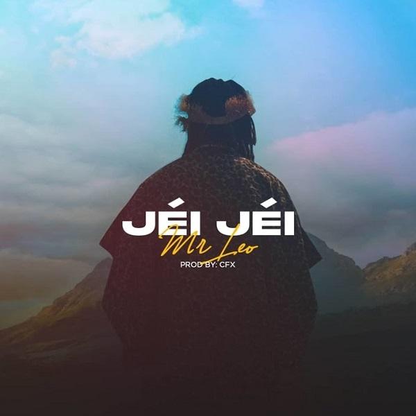 Mr Leo Jei Jei