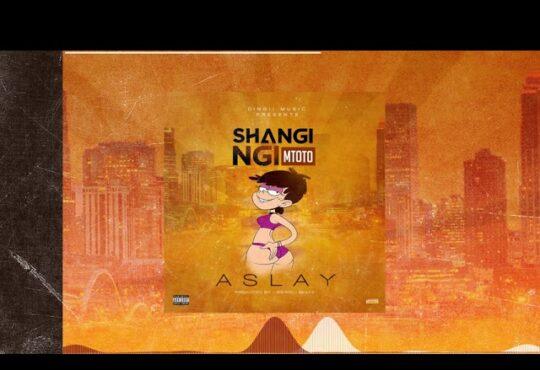 Aslay Shangingi Mtoto